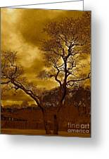 Joshua Tree Greeting Card by Q's House of Art ArtandFinePhotography