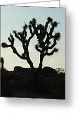 Joshua Tree At Sundown Greeting Card