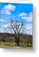 Joshua Tree Country Style Greeting Card