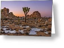 Joshua Tree Dusk Panorama Greeting Card