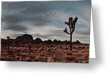Joshua Tree Hidden Valley Panorama Greeting Card