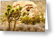 Joshua Tree National Park Skull Rock Greeting Card