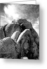 Joshua Tree Rocks Joshua Tree Greeting Card
