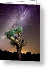 Joshua Tree Vs The Milky Way Greeting Card