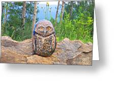 Journey Of Burrowing Owl Greeting Card