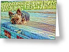 'jovie' Truckin Dogs Need Breaks Too Greeting Card