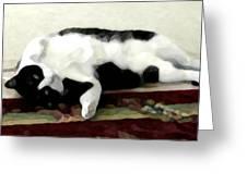 Joyful Kitty Greeting Card