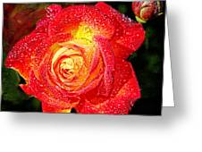 Joyful Rose Greeting Card