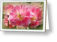 Joyful Spring Tulips Greeting Card