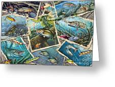 Jq's Fishing Collage Greeting Card