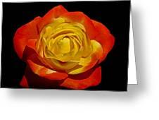 Judy Garland Rose Greeting Card