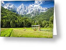 Julian Alps Farm Greeting Card