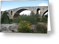 Julian Bridge Provence Greeting Card