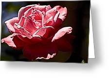 Julie Pinked Greeting Card