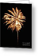 July Fourth 2012 P Greeting Card