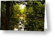 July Indian Lake Looking North Greeting Card