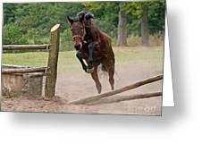 Jump Jump Greeting Card