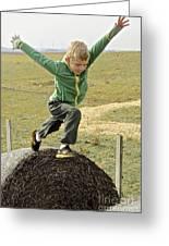 Jumping Haystacks Greeting Card