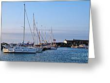 June Morning - Lyme Regis Harbour Greeting Card