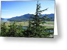 Juneau From Glacier Gardens Greeting Card