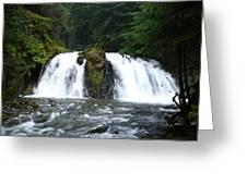 Juneau Trail Greeting Card