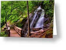 Juney Whank Falls Greeting Card