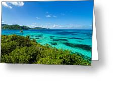 Jungle And Turquoise Water Greeting Card