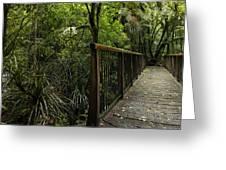 Jungle Bridge Greeting Card