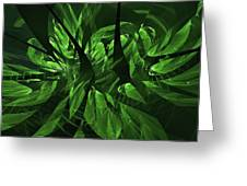 Jungle Clearing  Greeting Card