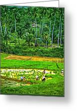 Jungle Homestead - Paint  Greeting Card