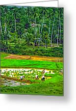 Jungle Homestead Paint Version Greeting Card