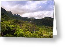 Jungle Landscape Greeting Card