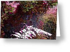 Jungle Red Tints Greeting Card