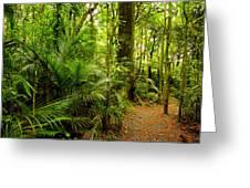 Jungle Scene Greeting Card
