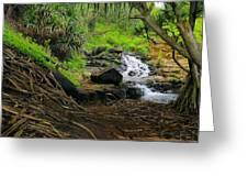 Jungle Stream Kauai Greeting Card