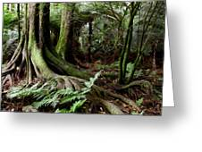 Jungle Trunks1 Greeting Card by Les Cunliffe