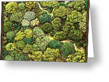 Jungle View Greeting Card