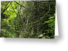 Jungle Vines Greeting Card