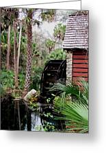 Jungle Water 2 Greeting Card by Will Boutin Photos