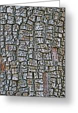 Juniper Bark- Texture Collection Greeting Card