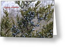 Juniper Berries - Happy Holidays Greeting Card