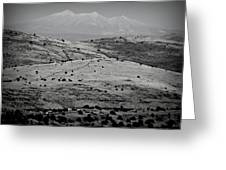 Juniper Hills To Snowy Arctic Peaks Black And White Greeting Card