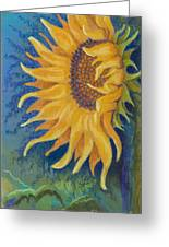 Just Another Sunflower Greeting Card