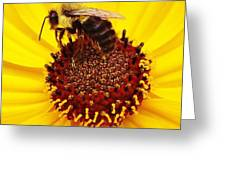 Just Bee Greeting Card