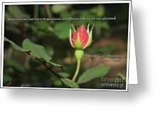 Just Bloom Greeting Card