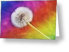 Just Dandy Rainbow 2 Greeting Card