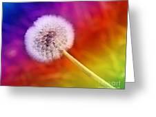 Just Dandy Rainbow Greeting Card