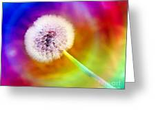Just Dandy Taste The Rainbow Greeting Card