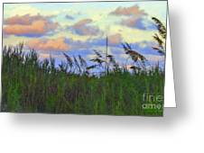 Just Over The Dune Greeting Card