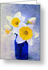 Just Plain Daffy 2 In Blue - Flora - Spring - Daffodil - Narcissus - Jonquil  Greeting Card